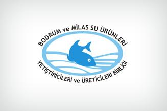 Bodrum ve Milas Su Ürünleri